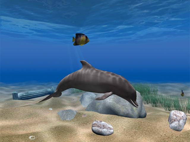 Dolphin Aqua Life 3D Screensaver 3.0.3.3 Screenshot